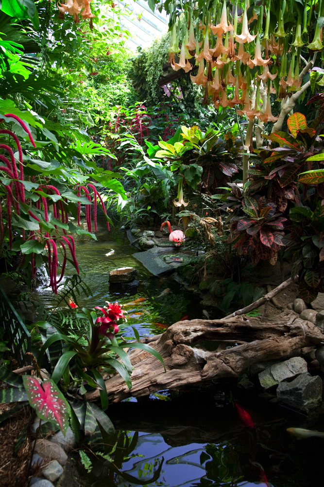 Victoria Butterfly Gardens - Photos, Travelogue & Reviews by John ...